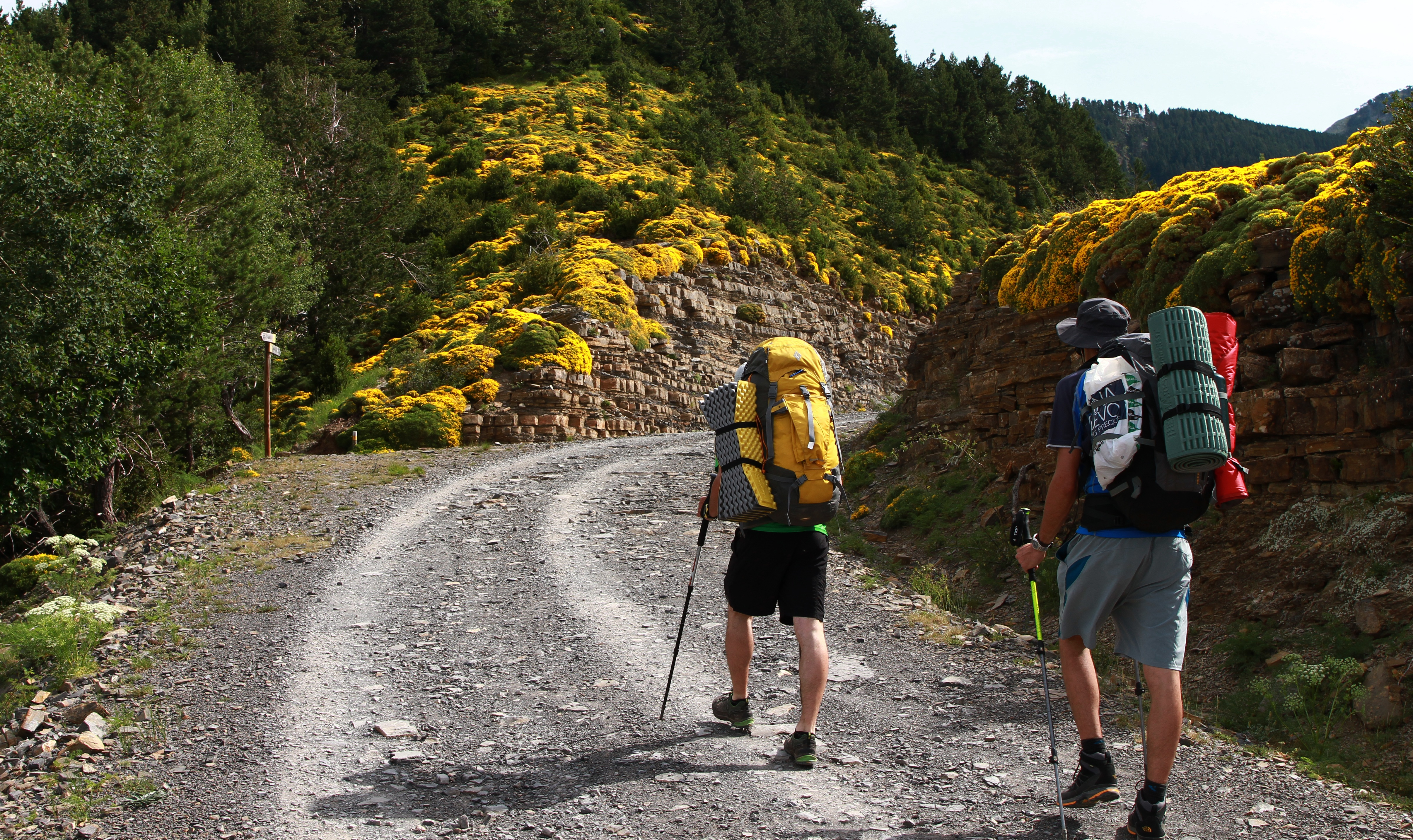 10 Best Hiking Tours and Adventures 2020/2021 (With ...